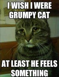 not-grumpy